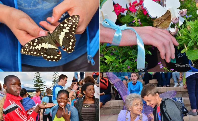 butterflies-for-autism